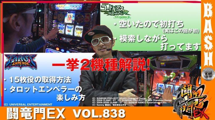 チェリ男 闘竜門EX vol.838【タロットエンペラー / ギアスC.C.ver】[BASHtv][パチスロ][スロット]